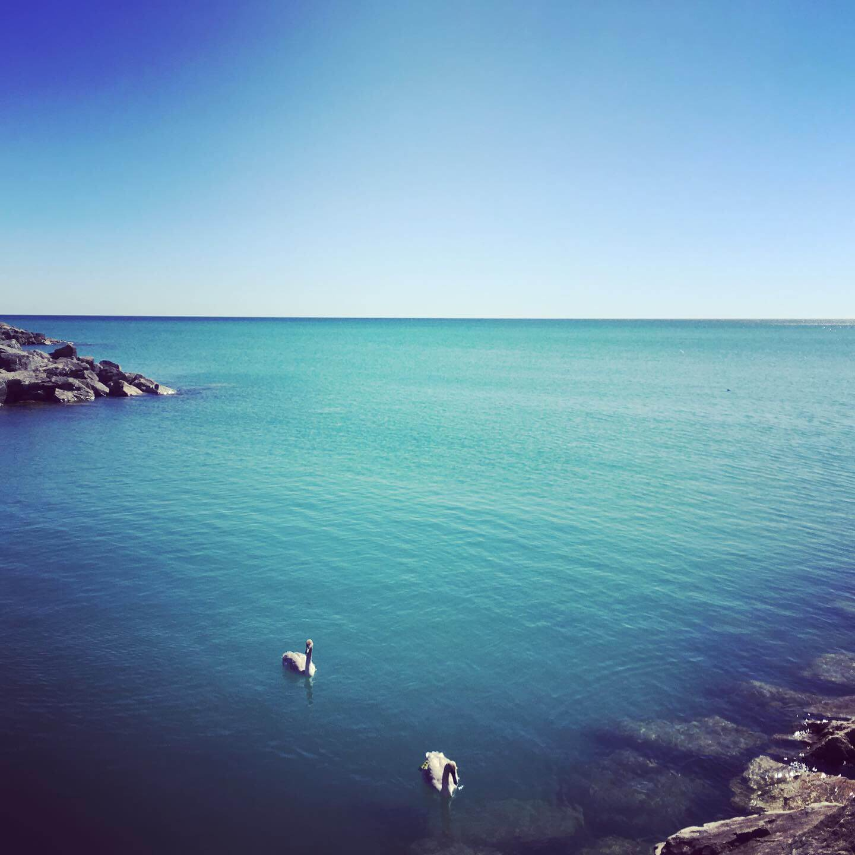 ldotm_toronto_cliffs_temps